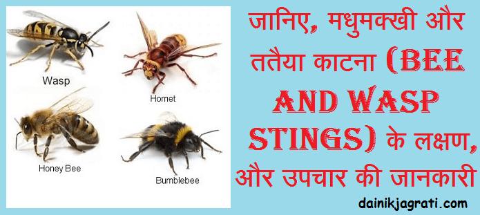मधुमक्खी और ततैया काटना (Bee and Wasp Stings)