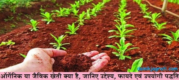ऑर्गेनिक या जैविक खेती क्या है