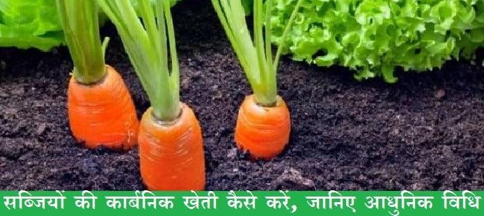 सब्जियों की कार्बनिक खेती