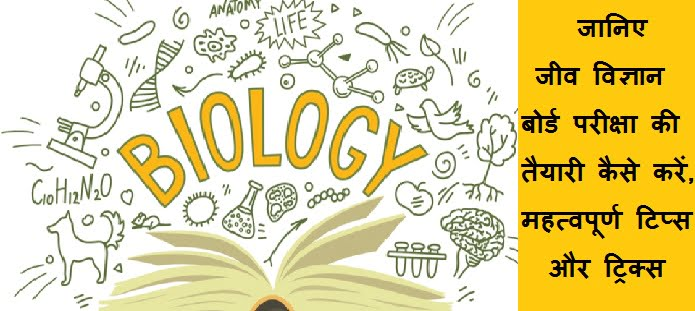 बायोलॉजी बोर्ड परीक्षा की तैयारी कैसे करें